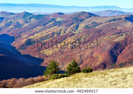 Colorful mountain slopes in autumn Carpathian. Morning misty view.