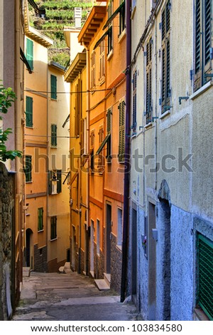 Colorful narrow street in the Cinque Terre, Italy - stock photo