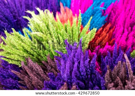 colorful of dry rice flower at market