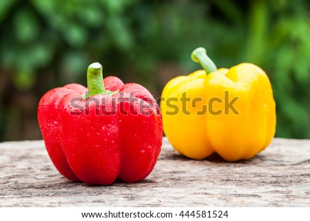 colorful of paprika on a green background - stock photo