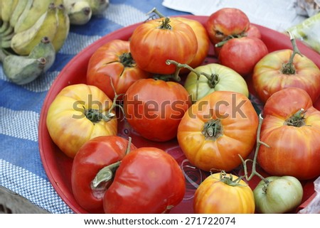 colorful of small size pumpkin in local market - stock photo