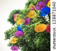 colorful oiled paper umbrella hung in a tree - stock photo