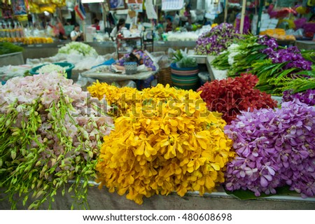 Colorful orchid in Thailand market