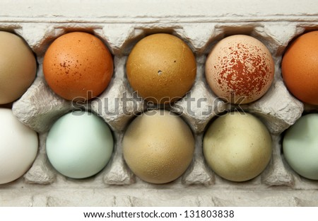 Colorful organic chicken eggs in a egg carton. These eggs were produced in small batches by a variety of chicken species so they appeared in different colors, patterns, and sizes. - stock photo