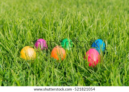 Colorful painted easter eggs hide in the garden