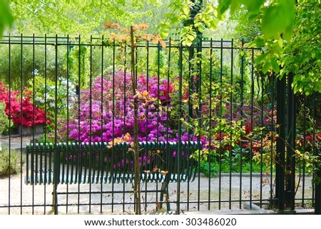 Colorful park garden with fence