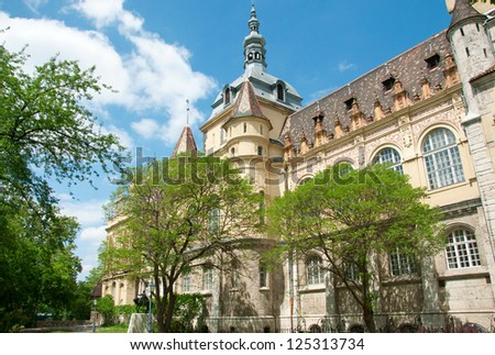 Colorful photography of view on Royal agriculture museum settled within Vajdahunyad castle on a bright sunny spring day with some green trees in front and against blue sky. Budapest, Hungary - stock photo