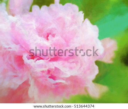 Colorful pink peony abstract painting