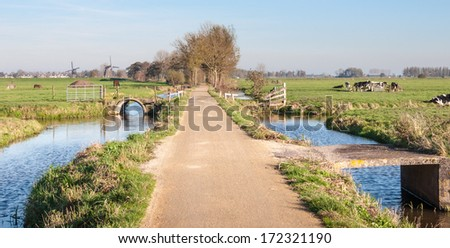 Colorful polder landscape with cows in the foregrounds and windmills in the background. - stock photo