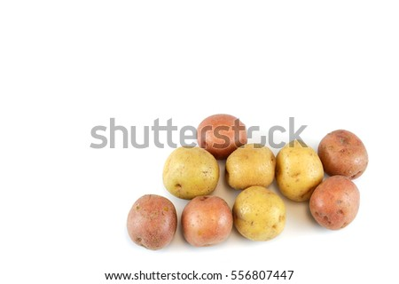 colorful potato isolated on white background