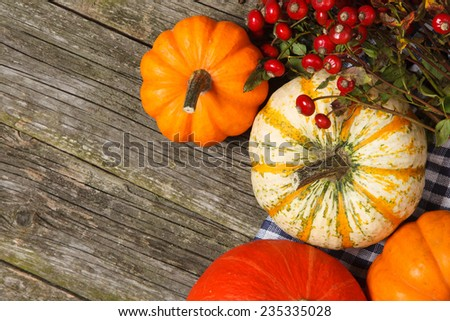 Colorful pumpkins on old wood