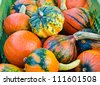 Colorful pumpkins  on the market - stock photo