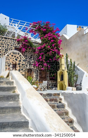 Colorful quiet backyard with beautiful flowers and classic traditional architecture in Santorini, Fira, Greece