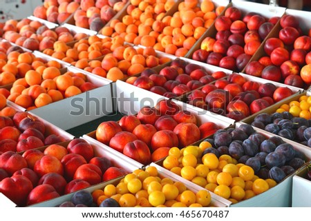 Colorful ripe peaches, nectarines, apricots, and plums at the local farmers market.  Bright orange, red, yellow, and purple colors.  Fruit boxes on display for sale.  Macro