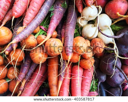 Colorful root vegetables. Carrots, beetroots, turnips. Autumn market.