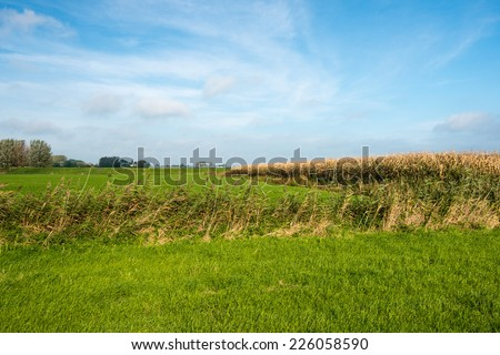 Colorful rural landscape on a sunny day in autumn. - stock photo