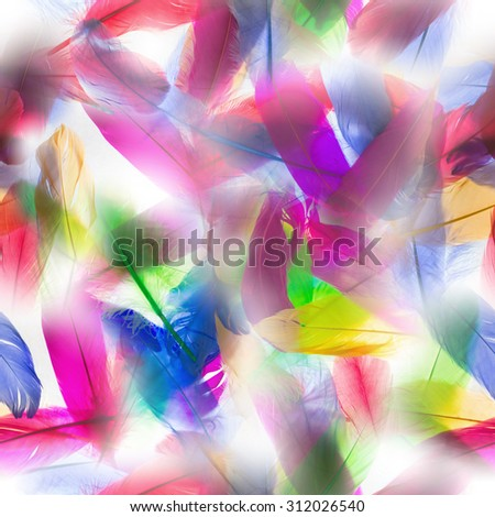 colorful, seamless feathers pattern, in backlit transparency - stock photo