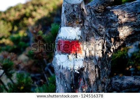 Colorful signs for hiking - stock photo