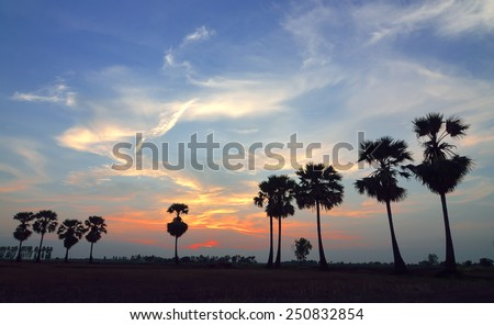 Colorful sky at sunset,Thailand - stock photo
