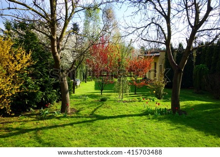 colorful spring backyard - stock photo