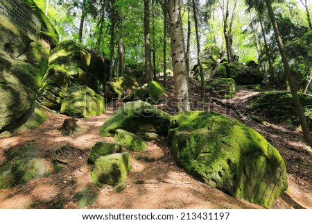 Colorful spring Landscape with Sandstone Rocks in Bohemian Paradise, Czech Republic