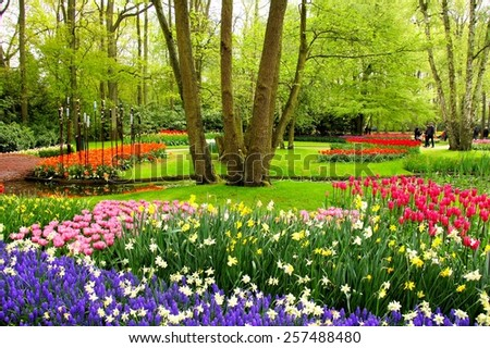 Colorful spring tulips and flowers at Keukenhof Gardens, Netherlands - stock photo