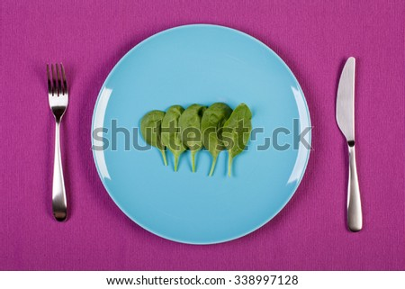 colorful stock image of spinach on a plate, diet concept - stock photo