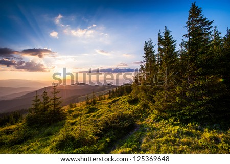 Colorful summer landscape in the Carpathian mountains. Sunset - stock photo