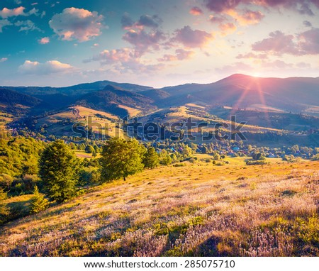 Colorful summer sunrise in the Carpathian mountains with rolling hills and valleys in golden morning light.  Borzhava ridge, Transcarpathian, Ukraine, Europe. Instagram toning.