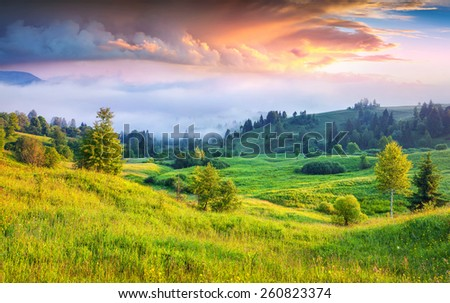 Colorful summer sunrise in the foggy mountains - stock photo