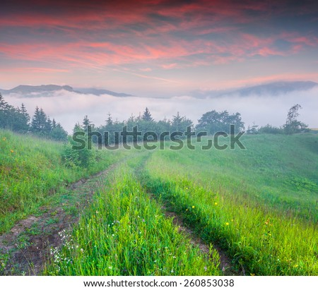 Colorful summer sunrise in the foggy mountains