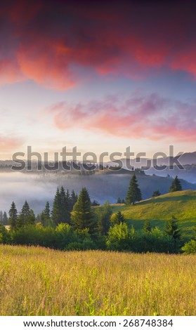 Colorful summer sunrise in the foggy mountains. - stock photo