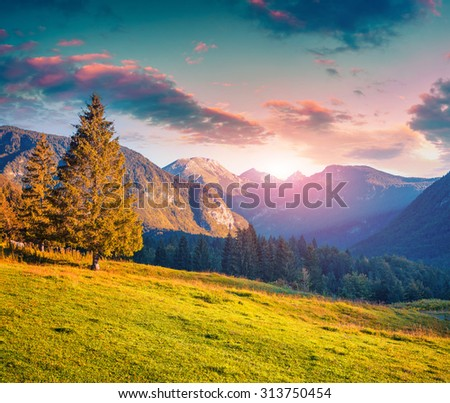 Colorful summer sunrise in the Triglav national park, Slovenia, Julian Alps, Europe. Instagram toning. - stock photo