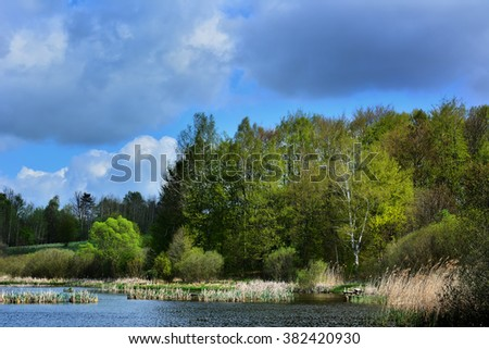 Colorful sunny spring landscape with lake