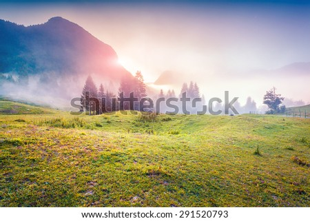 Colorful sunrise in the foggy summer mountains. Triglav national park, Slovenia, Julian Alps, Europe.