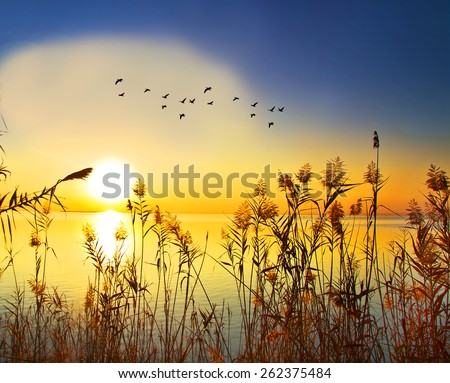 colorful sunrise on the lake - stock photo
