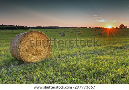 Colorful sunset at hilly rural field with rolls of haystacks