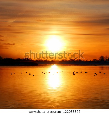 colorful sunset at the river bank with bird silhouettes