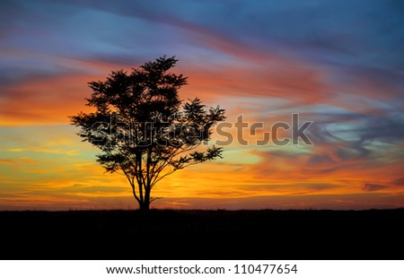 Colorful sunset in a field - stock photo
