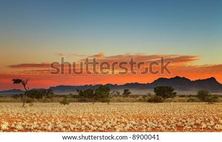 Colorful sunset in Kalahari Desert, Namibia - stock photo