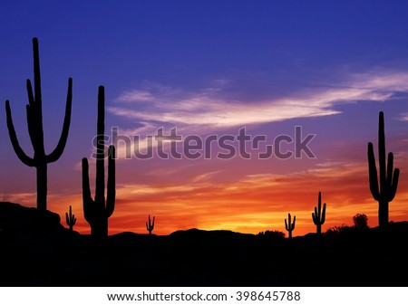 Colorful Sunset in Wild West Desert of Arizona with Cactus - stock photo