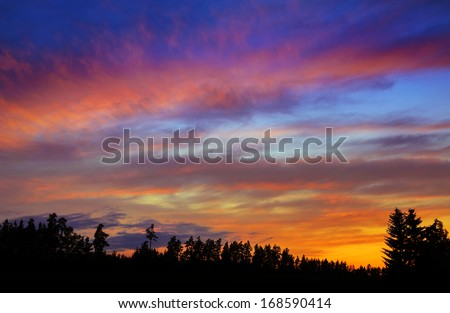 colorful sunset over forest