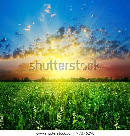 Colorful sunset over green field. - stock photo