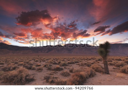 Colorful sunset over Sierra Nevada mountains seen from Owens Valley in eastern California - stock photo