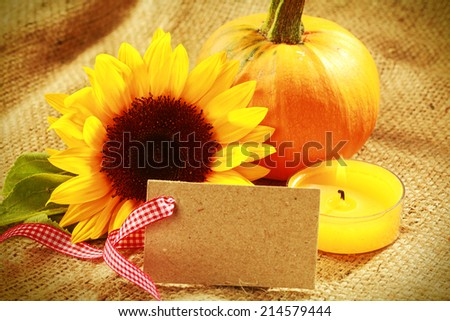 Colorful Thanksgiving or autumn card design with vivid yellow sunflower and fresh orange pumpkin on rustic hessian with a burning candle and blank gift tag with decorative ribbon for your greeting - stock photo
