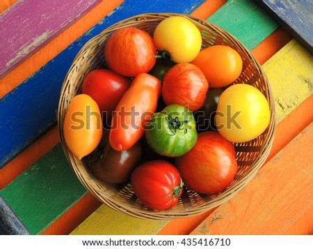 Colorful tomatoes - stock photo