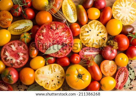 Colorful Tomatoes Background. Fresh Organic Tomatoes . - stock photo