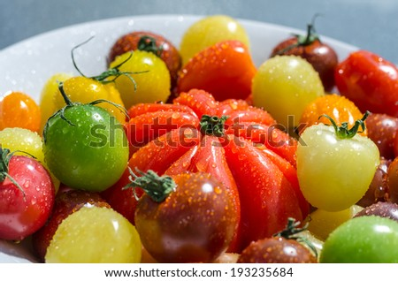 Colorful tomatoes in a bowl background