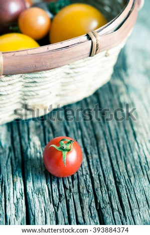 Colorful tomatoes/toned photo/selective focus - stock photo
