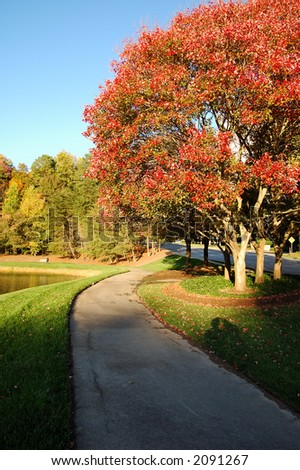 colorful trees around the pond in the fall - stock photo